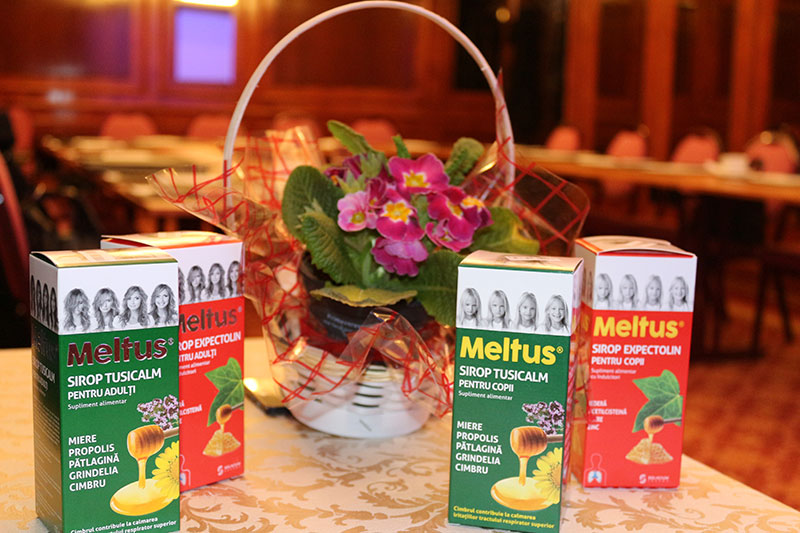 Meltus Social Moms